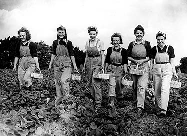 The Land Girls Empowered Women After the War